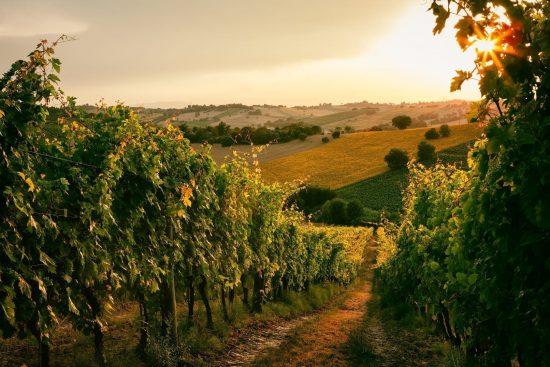 Italia Piemont